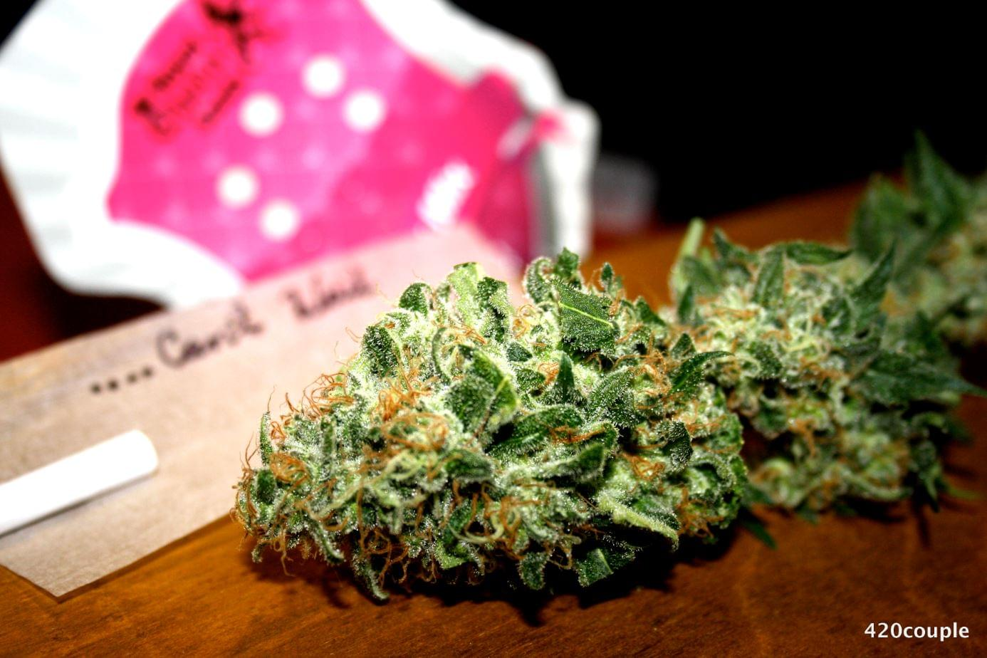 Winning picture: White Widow from 420 Couple