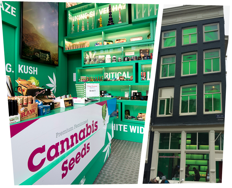 Amsterdam Seeds shop