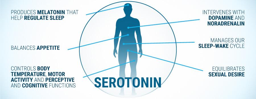 serotonin og noradrenalin
