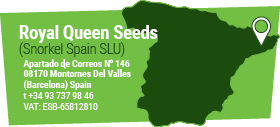 Royal Queen Seeds Spanje